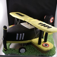 3D Tiger Moth Cake This cake had to be transported 4 hrs away so I made the wings out of wood to avoid breakage. It was fun to make. The body of the plane is...