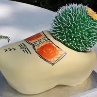 Klompen Groom's Cake  Klompen Cake with cactus - Groom is Dutch (thus the shoe) and from Arizona (which explains the cactus!) Carved chocolate cake with...