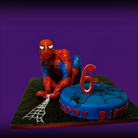 Spiderman Cake  Customer started out with 45, last minute only 14 , so I had to carve a smaller cake out of the main cake and recover etc.. it happens! All...