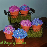 Happy Spring   Little pots of cupcake deliciousness!