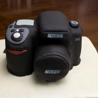 Nikon D80 Camera I made this cake for my husband's 32nd birthday. He's really into photography.