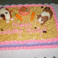 Guinea Pigs My niece loves guinea pigs. RCT guinea pigs covered in white modeling chocolate. Buttercream icing.