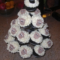 Sheep Cupcakes   I used white chocolate chips for the wool.