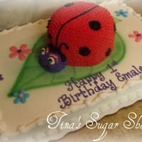 Lady Bug On Sheet Cake full sheet with lady bug cake on top all buttercream