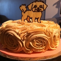 Chocolate Transfer Dog Rose Cake This was my first attempt doing a chocolate transfer - will definitely be doing these again in the future! The cake was apple cinnamon with...