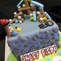 Angry Birds Made for my son's 7th birthday