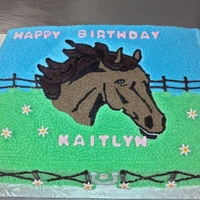 Horse 11x15 sheet cake, white cake inside, french vanilla almond buttercream icing. Starred in the horse head, grass, and sky with the smallest...