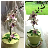Orchid Cake For An Avid Orchid Enthusiast Turning 90 Years Young Orchid cake for an avid orchid enthusiast turning 90 years young.