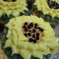 Sunflower Cupcakes sunflower cupcakes done with a leaf tip. the seeds are chocolate icing with a number3 tip. Buttercream icing.