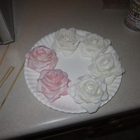 These Are My First Fondant Roses And I Absolutly Loved How They Turned Out They Were For My Cousins Wedding I Dont Have Any Pics Of The Fi... These are my first fondant roses and i absolutly loved how they turned out. They were for my cousins wedding, i dont have any pics of the...
