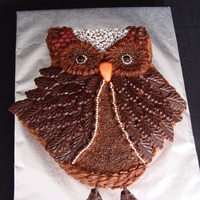 Owl Cake  This was so fun to make! I used chocolate buttercream and made chocolate 'feathers' using a mold and various other candies to...