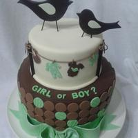 Birds With Clothesline Babyshower Cake inspired by the invitations. Birds are out of gumpaste. Everything else out of fondant.