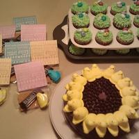 Easter Cake & Cupcakes