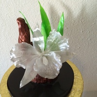 Pulled Isomalt Orchid Leaves And Branch Cast Isomalt Base Pulled isomalt orchid, leaves and branch. Cast isomalt base