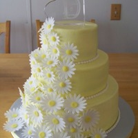 Daisy Cake Chocolate, vanilla and strawberry cake with buttercream frostings, daisies and accents fondant.
