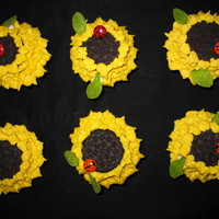 "Sunflower With Ladybirds Idea from ""Hello Cupcake!"" book. Chocolate, marble and vanilla cupcakes with Seriouscakes buttercream icing. Oreo cookies for..."