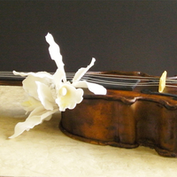 Violin Almond-cocoa genoise (Ann Amernick's recipe), apricot glaze, apricot filling, almond paste and fondant covers.