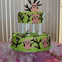 Baby Girl Shower Owl Cake  two tiered cake in green German buttercream frosting, decorated with chocolate frosting branches with fondant cherry blossoms. Owl made of...