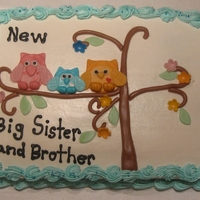 Owls, Big Brother And Big Sister