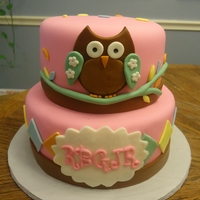 Owl This was a variation on a picture of a cake that was sent to me. It was for a womans birthday, but I thought it would be really cute as a...