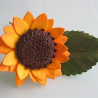 Sunflower From Nicholas Lodge Class
