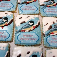 Bird Cookies Shortbread cookies with royal icing. Bird and text are edible images, rest is royal icing.