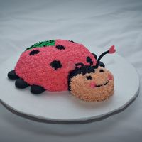 Ladybug My daughters 1st birthday smash cake. I actually used a soup bowl to make the body and the head is a cupcake. Fondant feet and antennae.