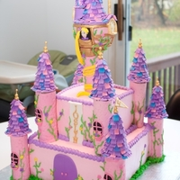 Rapunzel   Little girl requested a pink and purple Rapunzel castle so that's what she got! Thanks for looking!