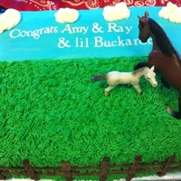 Lil Buckaroo Double layer 9x13 chocolate cake with American buttercream. Customer placed the horses.
