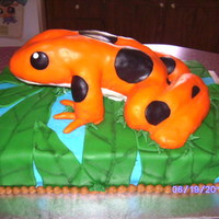 Rain Forest Theme Graduation Cake Chocolate sheet cake iced in BC with fondant accents. Dart frog created with rice crispy treats and covered with fondant. My 14 year old...