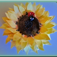 "Sunflower Cake For My Hubby DH loves to garden and his favorite flower is...sunflower! This was my first attempt at the ""upside down"" method of icing. I knew..."