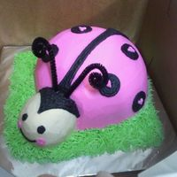 3D Ladybug Smash Cake   3D Ladybug cake, using all buttercream. Used a pipe cleaner for the antennae.