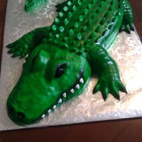 Alligator Cake The alligator cake was made using an 11x15 sheet cake, cut in half then stacked to make the belly. We only needed 25 servings so the head,...