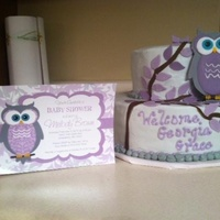 Owl Baby Shower Cake Owl cake made to match invitations