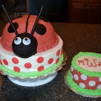 Ladybug 1St Birthday Cake Buttercream with fondant accents
