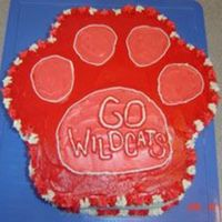 Wildcats High school musical wildcats cake