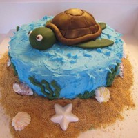 Turtle Birthday Cake Hi Everyone! I made this cake for a 6 year old boy's birthday. It is a yellow cake with chocolate fudge filling. Buttercream frosting...