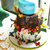 Nature Themed Cake This was an 80th birthday cake for a nature/squirrel lover! The cookie pops were actually meant to be inserted into the top tier, but,...