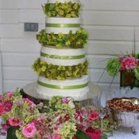 Lauren's Wedding Cake  4-tiered white cake with bc icing, Decorated with green ribbon and green hydrangeas. This was an outside wedding and 90 degrees...the bc...