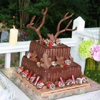 Lauren And John's Wedding 5/31/08 Chocolate cake with buttercream and filled with chocolate cream. The deer antlers were made from copper and covered with choco fondant. I...