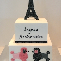 Paris Birthday Cake My daughter fell in love with Peggy Porchen's Joyeus Anniversaire cake mainly because it had the Eiffel Tower on it & she is Paris...