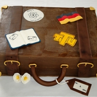 Suitcase Cake  Groom's cake that incorporated aspects of the bride and groom's lives, where they'd traveled and were going for their...