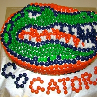 Go Gators! Chocolate cake covered with buttercream. Mosaic of Gators logo done with M & M's