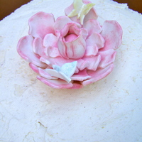 Summer Cake Vanilla cake, raspberries and white meringue buttercream. The flower and butterflies are made out of marzipan. TFL!