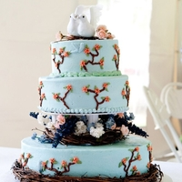 Bird/nature Themed Wedding Cake White butter cake with raspberry filling. Pale blue buttercream with some fondant accents and some non-edible floral crafter's items...