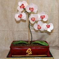 The Orchid Cake My first attempt at orchids or any flower branch thinggy. I am so proud of this cake. I started useing the Amazing Puddy product from...