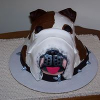 Dog Cake 3-d dog made with stacked cakes that I carved. Then covered in buttercream with fondant accents.