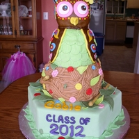 Owl Graduation Cake This cake was so much fun! The owl was really a challenge, but when I figured it out I had a blast with it. The head is formed from Rice...