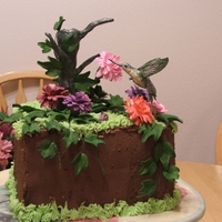 Humming Bird This is my latest cake I made for my mother's birthday last week. Hand sculpted in gumpaste and hand painted. Important to note also:...