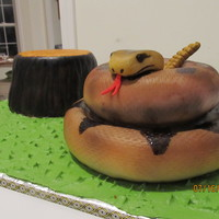 Rattlesnake Cake yellow cake covered in Duff fondant and painted. Use 6 and 8 in pans. Head and rattle is fondant w/ tylose added.